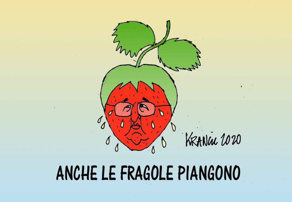 Fragole-bellanova-1024x708.jpg